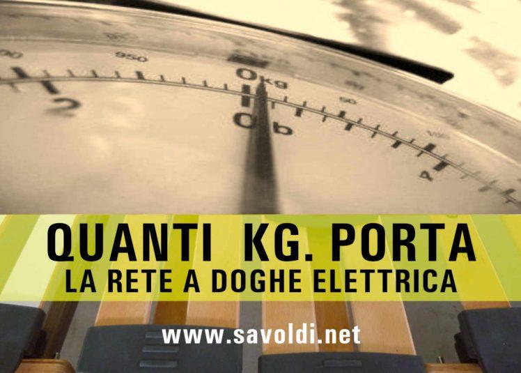 Portata Rete Elettrica a Doghe