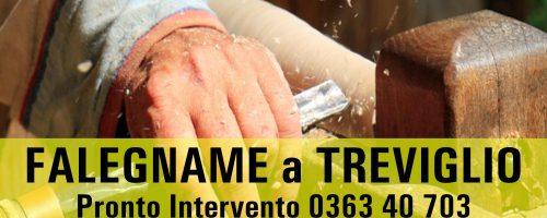FALEGNAME Pronto Intervento a TREVIGLIO per RIPARAZIONI Urgenti